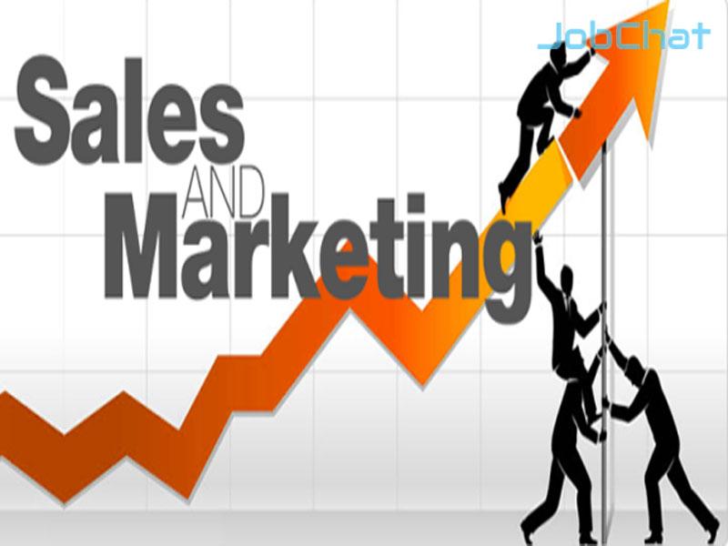 phân biệt sale và marketing
